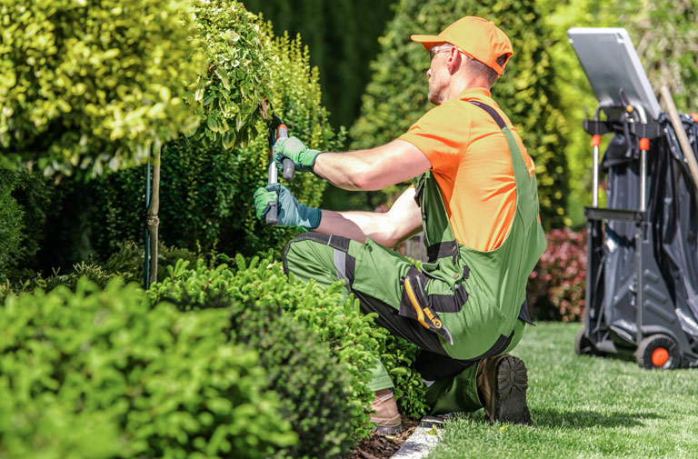 residence senior espace vert entretien